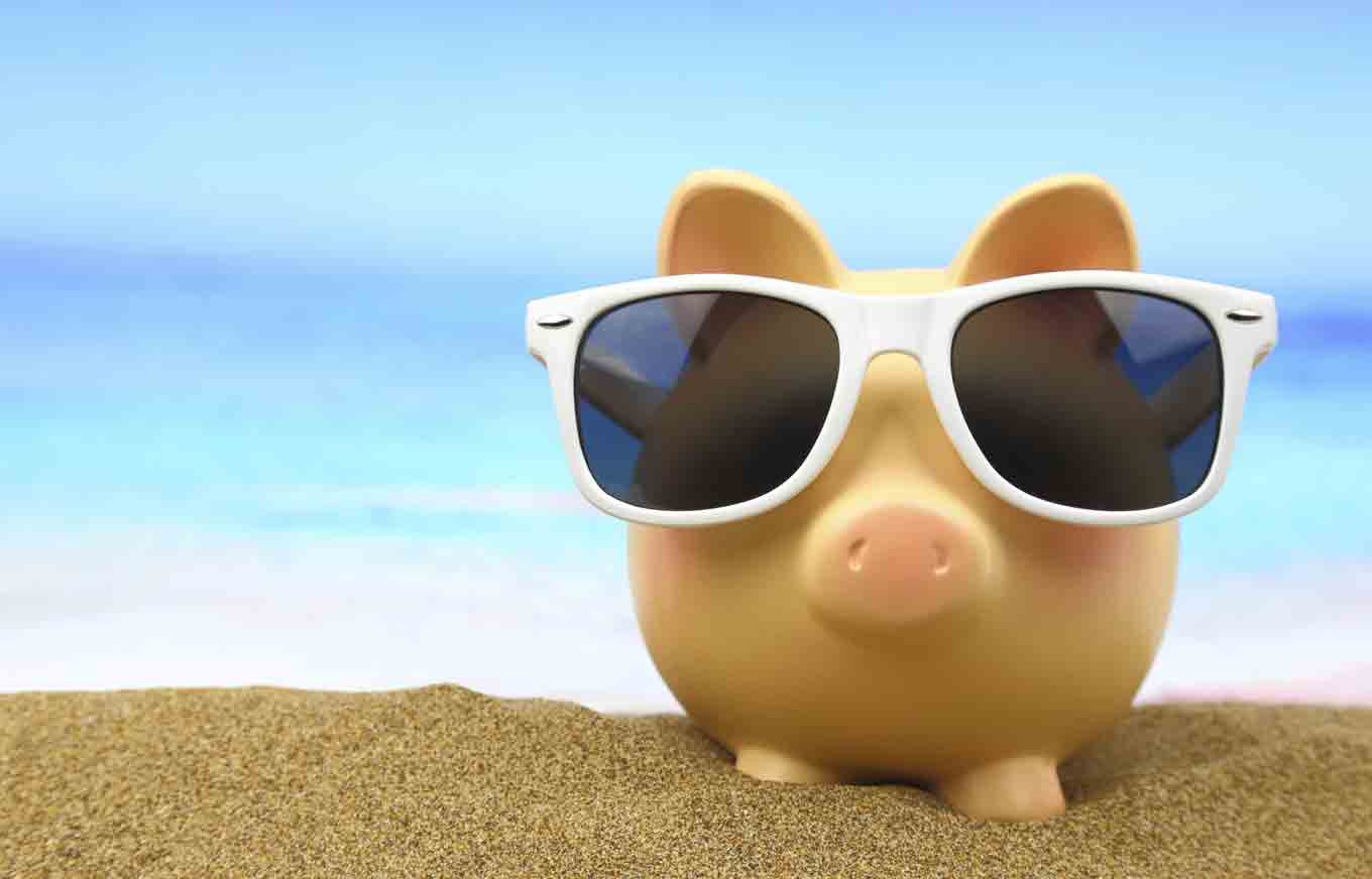 sunglasses beach pig